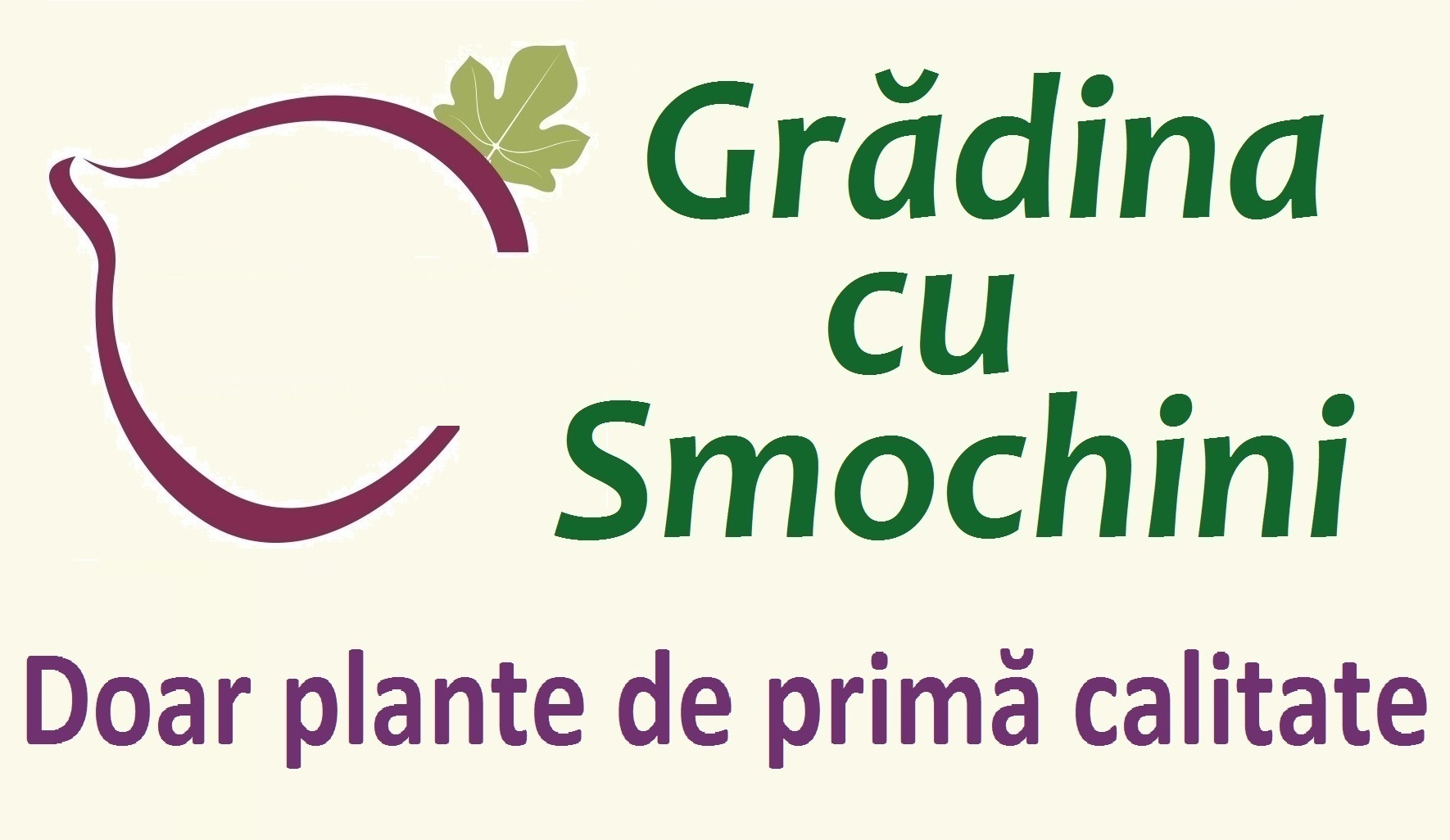 Grădina cu Smochini - magazin online cu plante fructifere și decorative de primă calitate